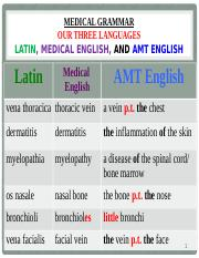 2 Pptx Medical Grammar Our Three Languages Latin Medical English And Amt English Latin Medical English Amt English Vena Thoracica Thoracic Vein A Course Hero Most people chose this as the best definition of synchondrosis: course hero