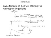 3306 Flow of Energy-pictures