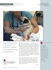 Breed-Specific-Anesthesia - 2012 - Clinician_s Brief - Peer Reviewed