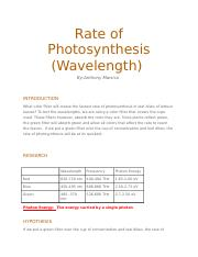 Photosynthesis Report .docx