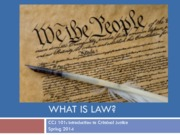 What is law CCJ101 SP14