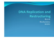 21-DNA+replication+and+restructuring.pdf