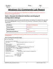 COMP230_Wk1_Lab_Report (2).docx
