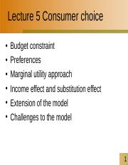 Lecture 6 Consumer choice