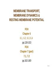 2b MEMBRANE TRANSPORT, MEMBRANE DYNAMICS  RMP (Fox 6) (5).ppt