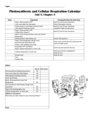 photosynthesis and cellular respiration worksheet with answers bio i na 1 cells and energy 1. Black Bedroom Furniture Sets. Home Design Ideas