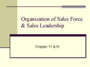 Organization+of+Sales+Force
