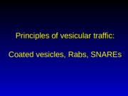 Lecture 5, coated vesicles.pptx