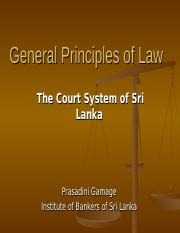 Legal Environment -court structure.ppt