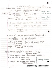 chemalite b Chemalite inc (b): cash flow analysis case solution,chemalite inc (b): cash flow  analysis case analysis, chemalite inc (b): cash flow analysis case study solution, .