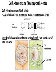 cell_transport_powerpoint