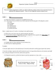 digestive_system_treasure_hunt_lesson_2.doc