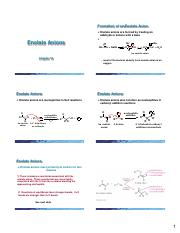 Chapter 19 (Enolate Anions) 6 Slides per Page