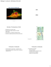Lecture 2-Attribute of the Cell.pdf