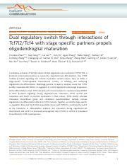 Dual regulatory switch through interactions of Tcf7l2:Tcf4 with stage-specific partners propels olig