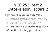 MCB 252 Cytoskeleton Lecture