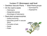 Lecture 17 Heterospory and seed