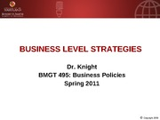BMGT 495 businesslevel.strategy spring2011