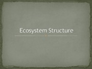 Ecosystem_Structure