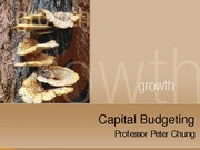4 Capital Budgeting.iLearn.fall09