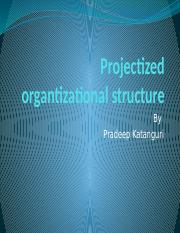 Projectized organtizational structure.pptx