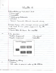 MGMT 4340 CH 13 NOTES