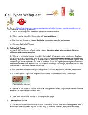 CellTypes-Webquest
