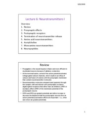 lecture 6 neurotransmitters 1