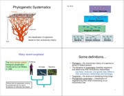 Lecture 9 - Chapter 25 - Phylogenetic Systematics