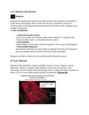 Lecture 13 Adhesions and Junctions notes 2015.pdf