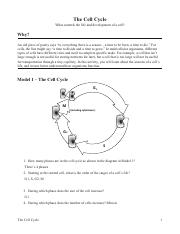 The_Cell_Cycle_Pogil.pdf