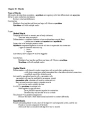 10 10 07 - Muscular System I