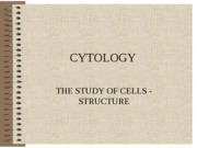 CYTOLOGY(brief) (LECTURE NOTES)