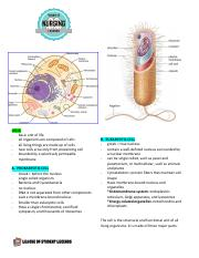 4. Structural Components of Cell.pdf