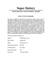 SUPER BATTERY-EXECUTIVE SUMMARY