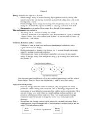 Biology Chapter 8 Study Guide