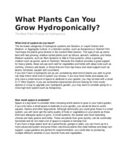 What Plants Can You Grow Hydroponically.docx