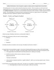 POGIL Feedback Mechanisms-S.pdf - Daisy Inocian Period 1 Feedback ...