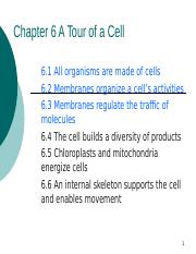 Ch 6 A Tour of a Cell.ppt
