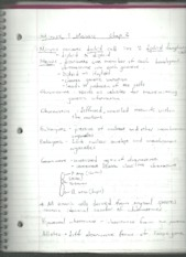 Notes #4