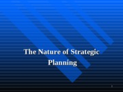 Strategic_Planning_Lau