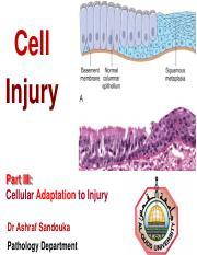 Cell Injury Part III