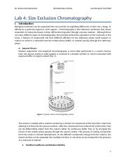 Lab 4_Chromatography_Fall 2020_Online.docx