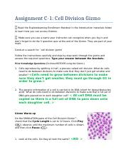 C 1.1 Assignment Cell Division Gizmo.docx   Assignment C 1 ...