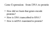 DNA_to_protein_2008-1