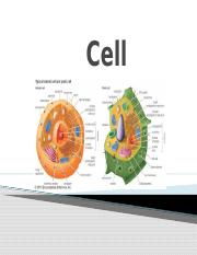 Cell.pptx