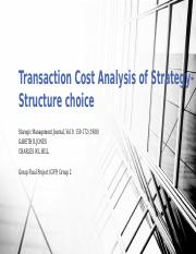 GFP_Grp2 Transaction Cost Analysis of Strategy- Structure choice_Group2.pptx