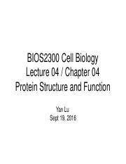 Lecture 4 Protein Structure and Function