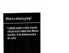 what is a minority group.pdf