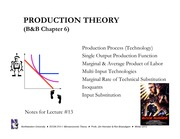 W12 MIC 13 Production Theory